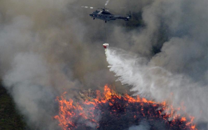 政府飛行服務隊機師及空勤主任要求高,體能智能缺一不可_山火救援