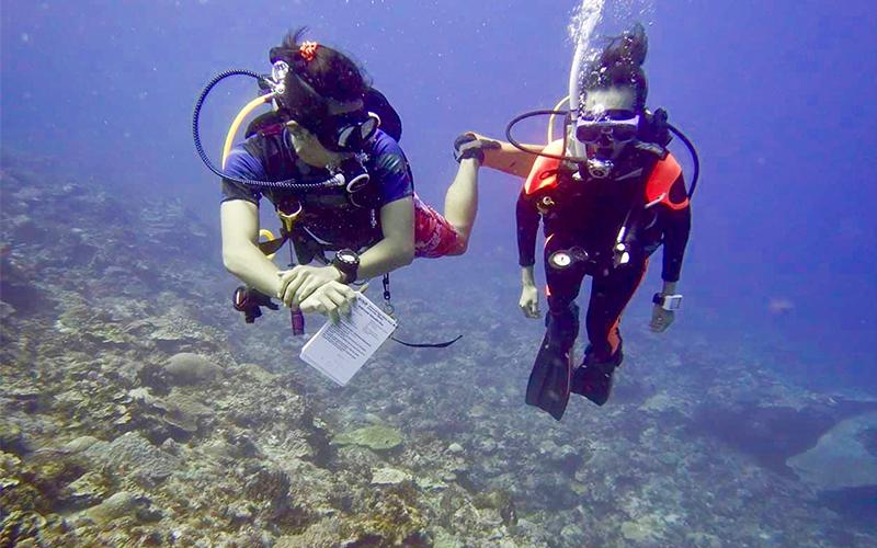 【返工無國界】有一種職業讓他環遊海底世界,潛水教練優哉游走各國水域3