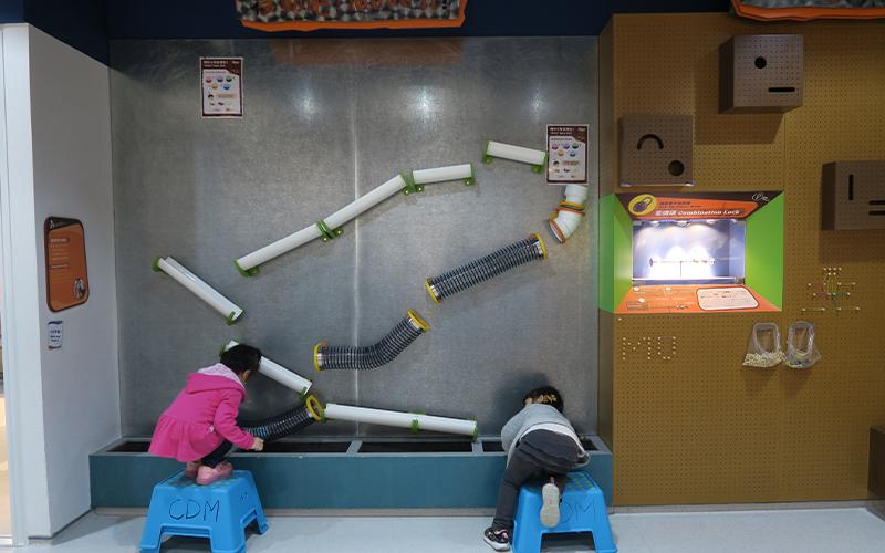 哈佛教育碩士創香港首間兒童博物館 坦言:「想小朋友唔跟規矩﹗」-3